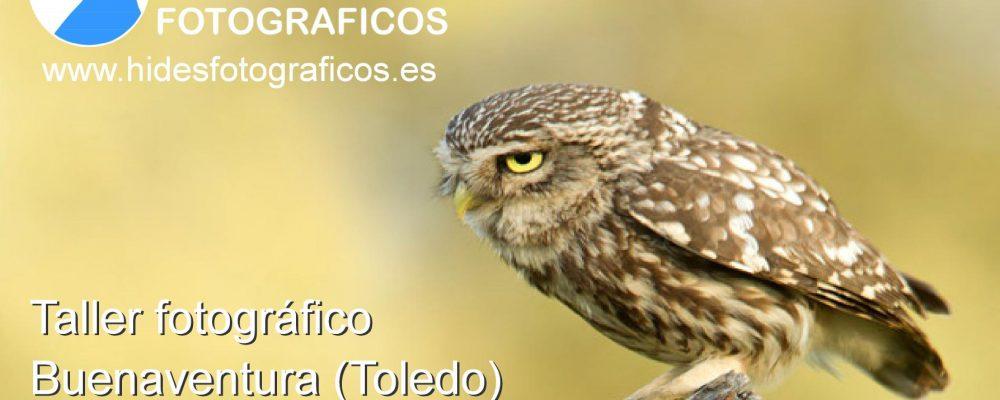 Taller fotográfico en el Tietar (Toledo)